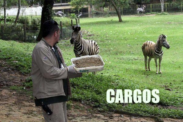 concurso-zoologico-cargos