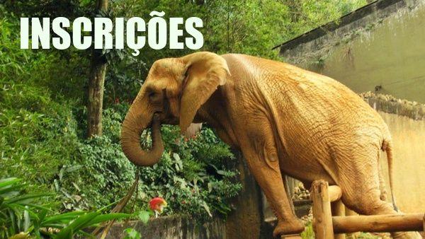 concurso-zoologico-inscricoes